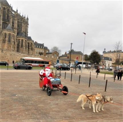 Chien de traîneau et Père-Noël dans le Mans !